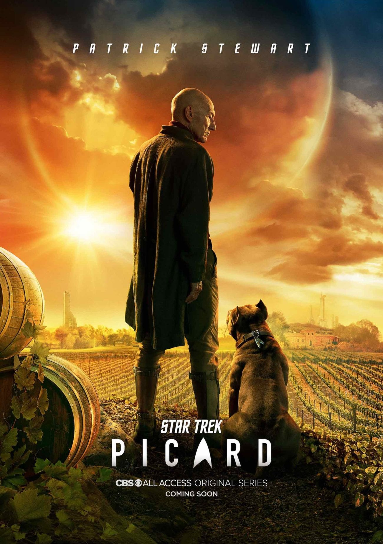 We came up with a few things 'Star Trek: Picard' could borrow from its predecessors to thrill us, 'Star Trek: The Next Generation'.