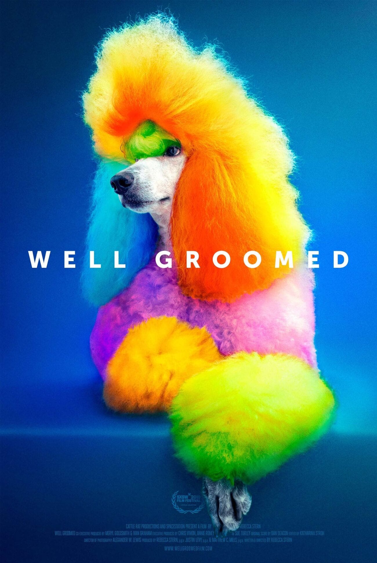 Well Groomed is a documentary which explores the vibrant world of color & glitter which is creative dog grooming.