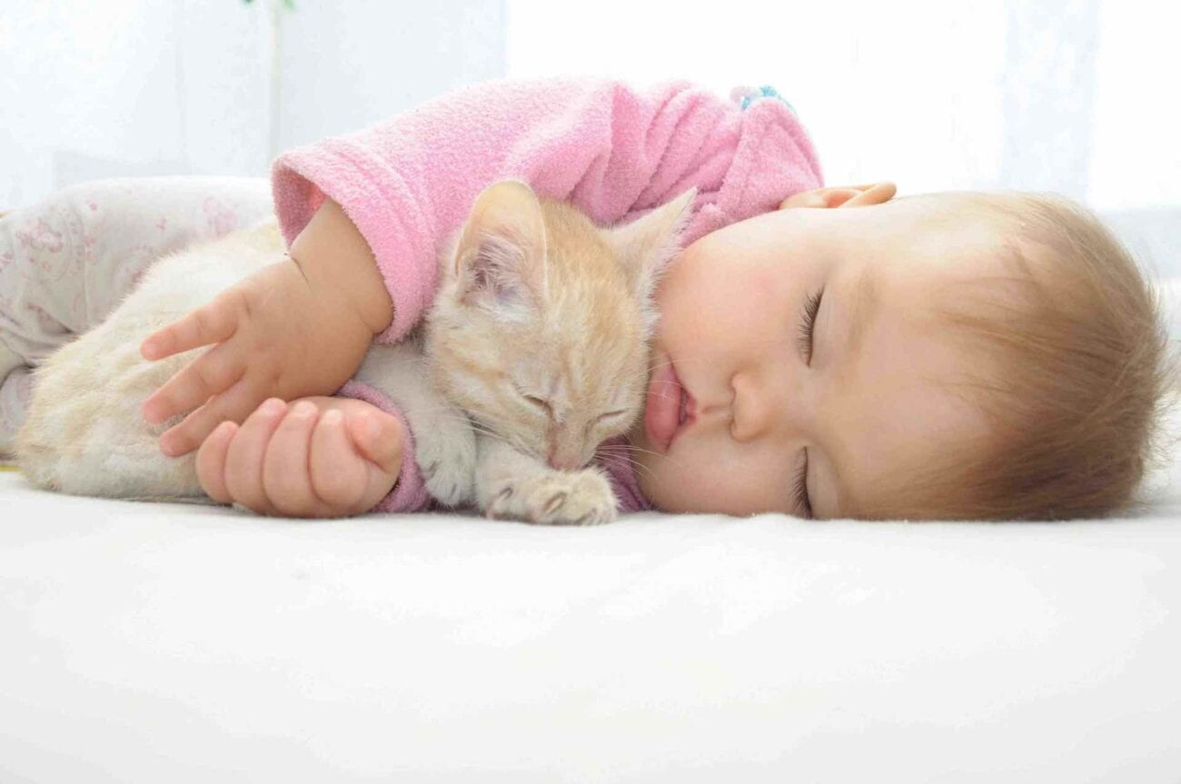 What more adorable content from YouTube to distract from 2020? Let us present the genre of baby with kitten videos.