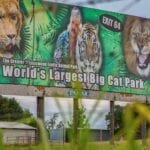 Joe Exotic's zoo, which was made famous in Netflix's 'Tiger King' appears to be in peril. Are the gates being shut permanently?