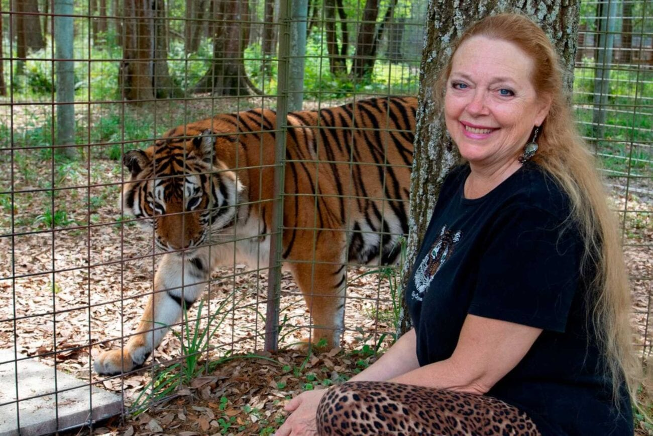 Carole Baskin is worried about how she'll be portrayed in scripted versions of 'Tiger King'. Here's why she's asking to consult on the series.