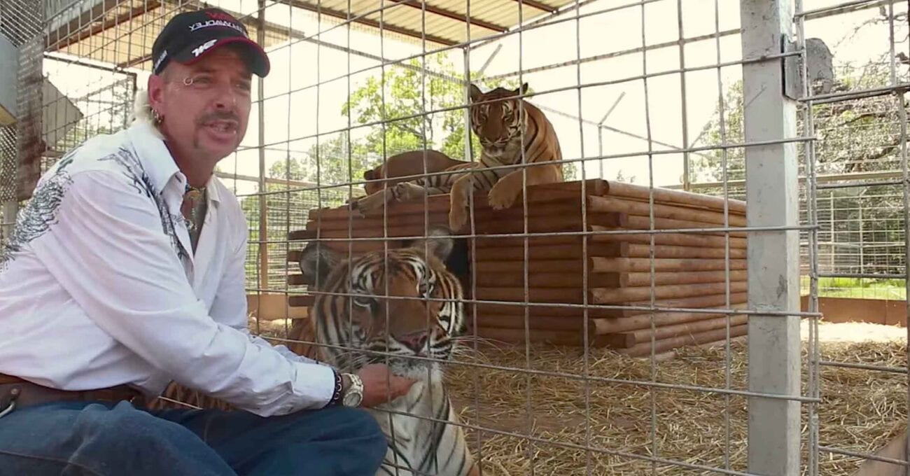 Netflix brought the story of 'Tiger King' into all of our homes, but will they miss out on the craze of scripted series based on their documentary?