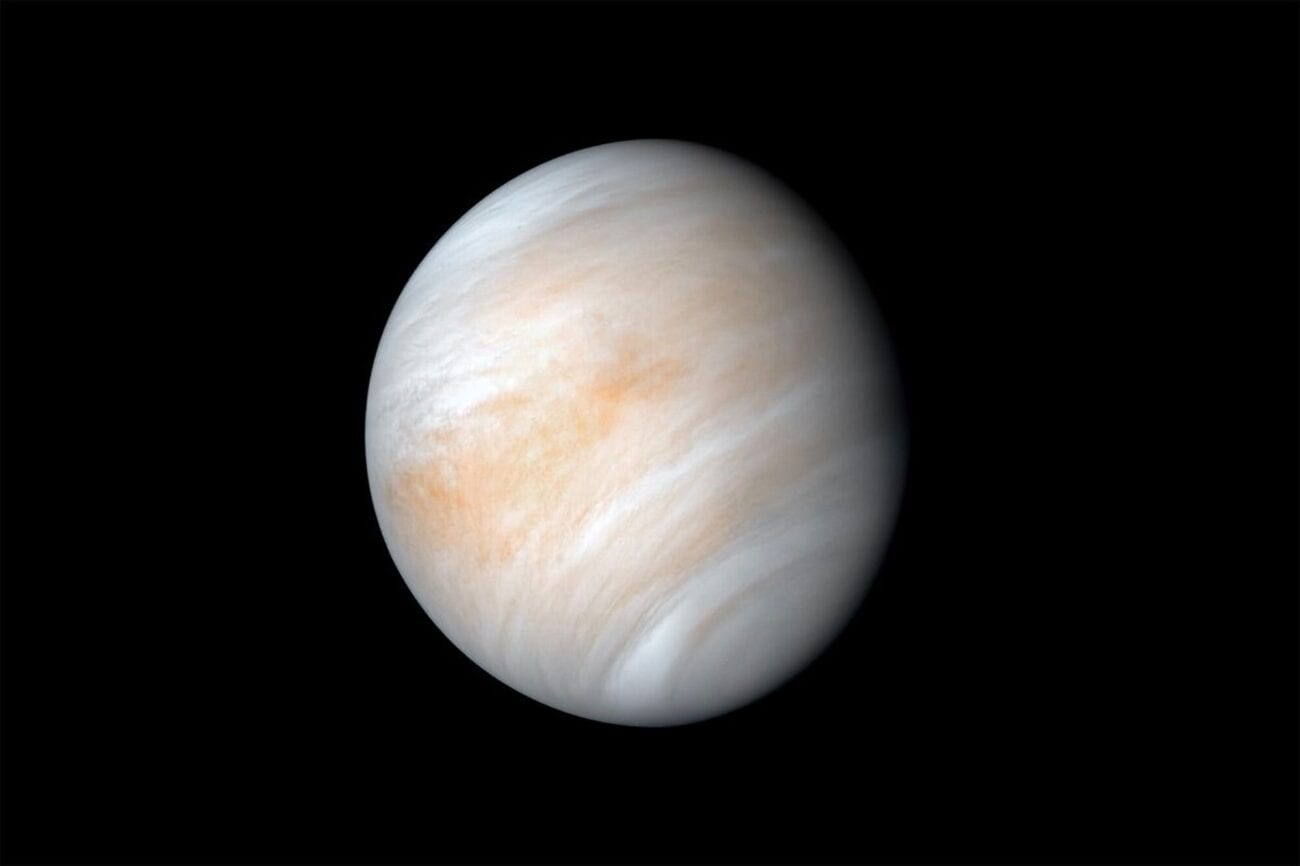 The planet Venus is often referred to as Earth's evil twin, but does this also include its own version of living organisms?