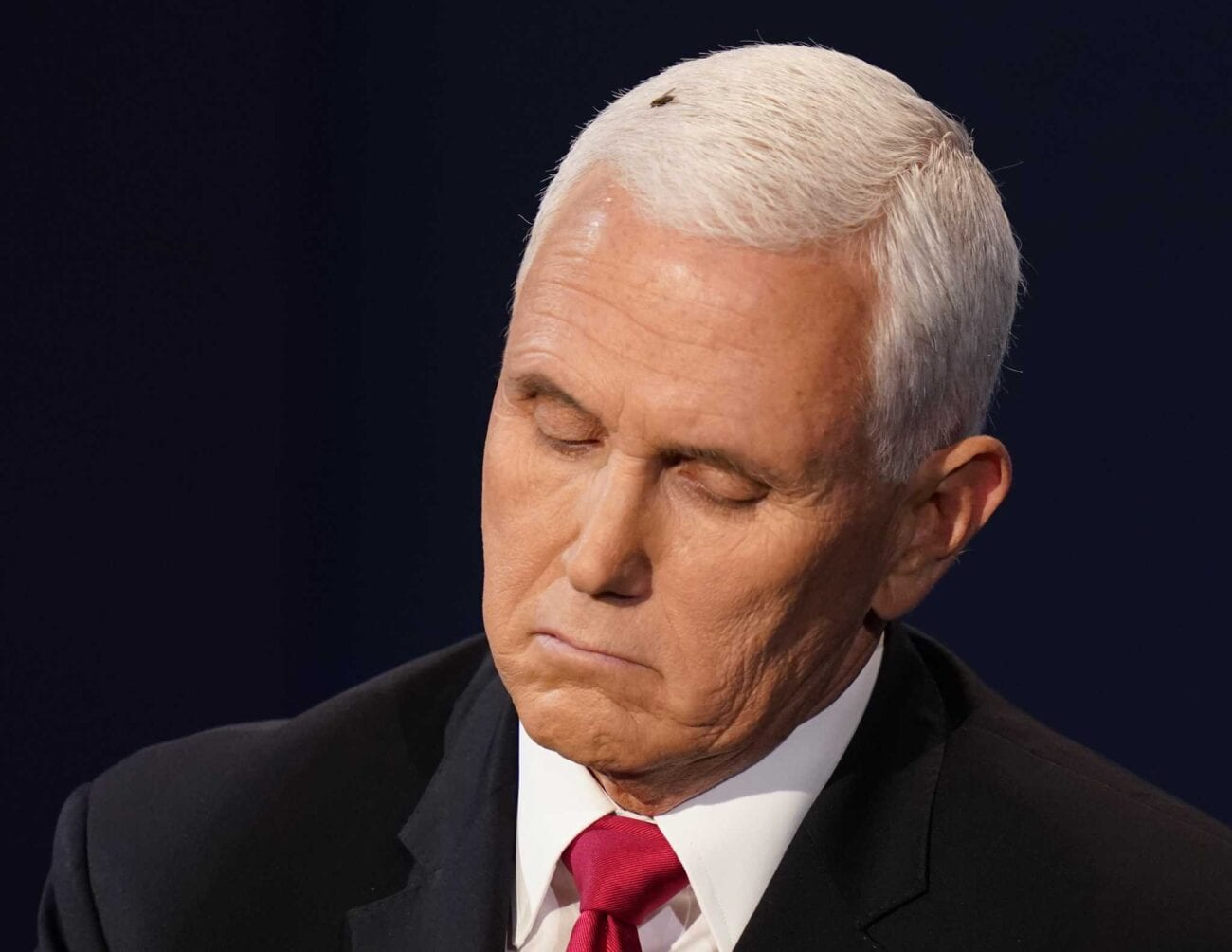America agrees the fly on Mike Pence won the debate last night. Check out the funniest memes buzzing around the internet about it.