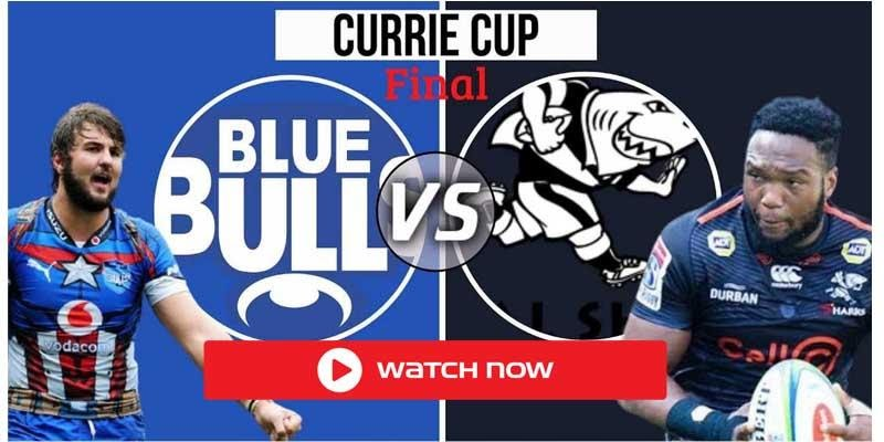 The Currie Cup 2021 Final is here between the Blue Bulls and the Sharks. Here's all the places you can live stream the game without cable.