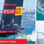 American Magic is set to take on Luna Rossa in the Prada Cup 2021. Discover how to live stream the event for free.