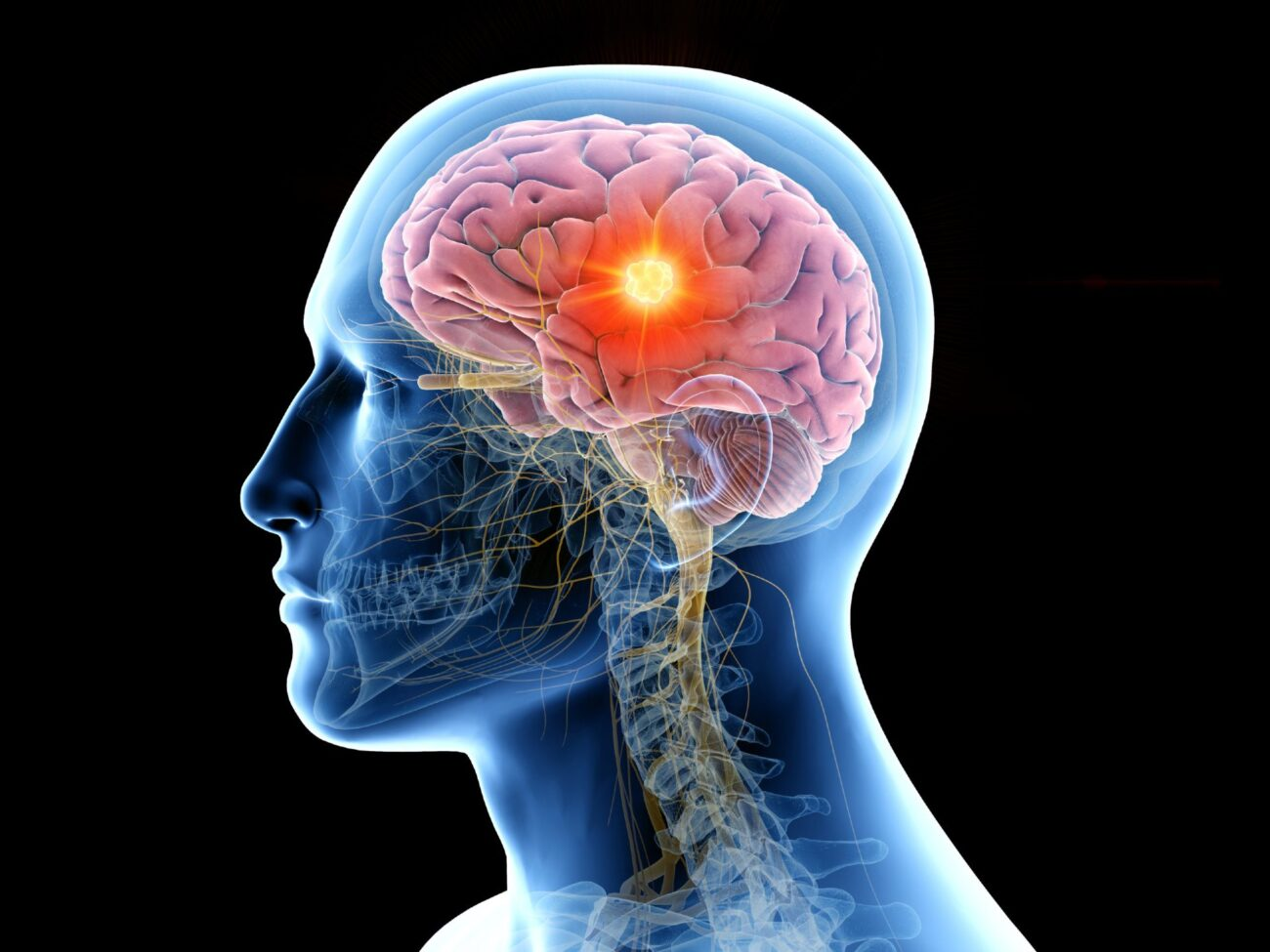 Executive function is a crucial part of the thinking process. Here's an overview of how executive function works.