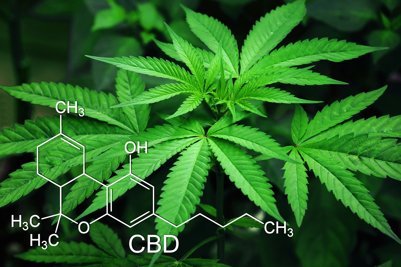 Do you want to improve your CBD cartridges? Take a look at these 8 secret techniques that will help to improve your CBD cartridges.